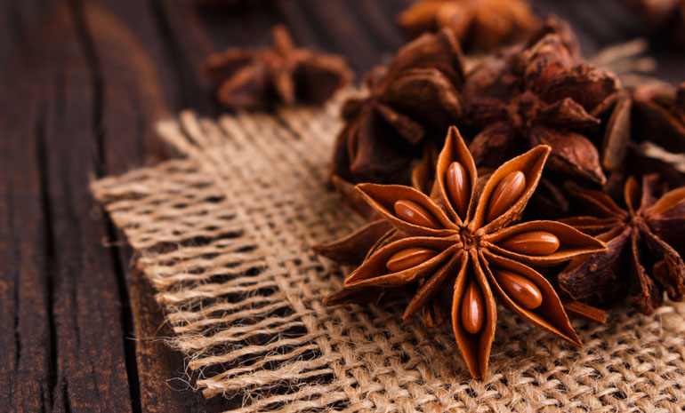 natural antibiotics anise